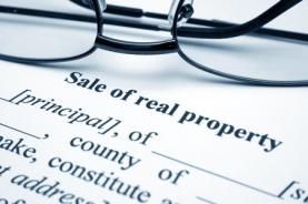 Sale contract w:glasses